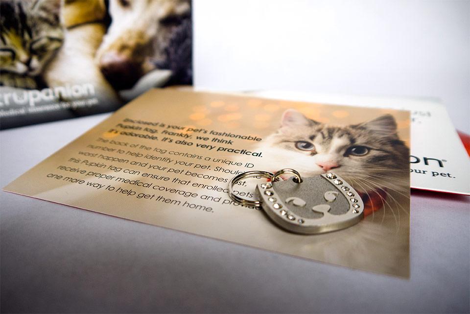 tru_hck_cats